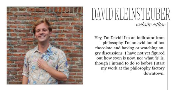 david website