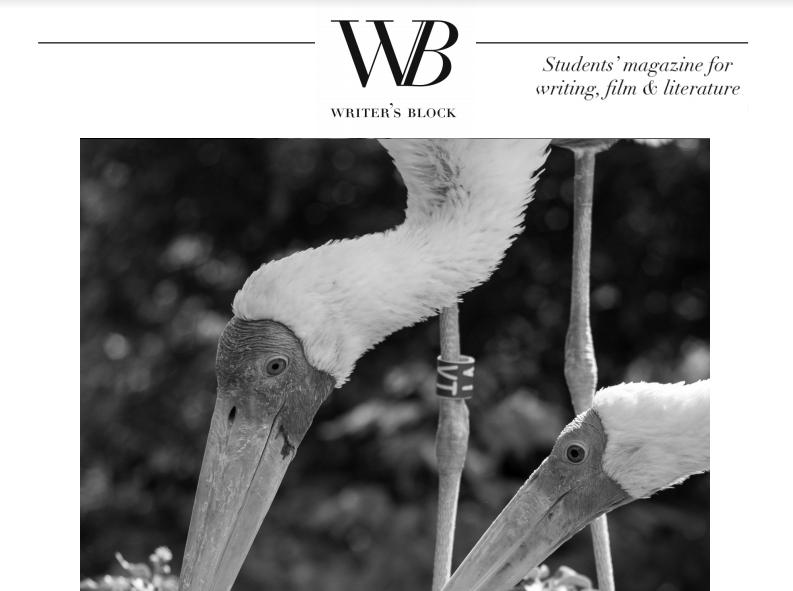 Writer's Block #41